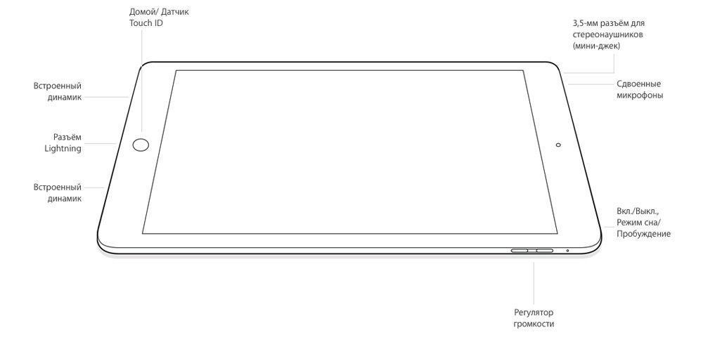Расположение разъёмов и кнопок в iPad Air 2