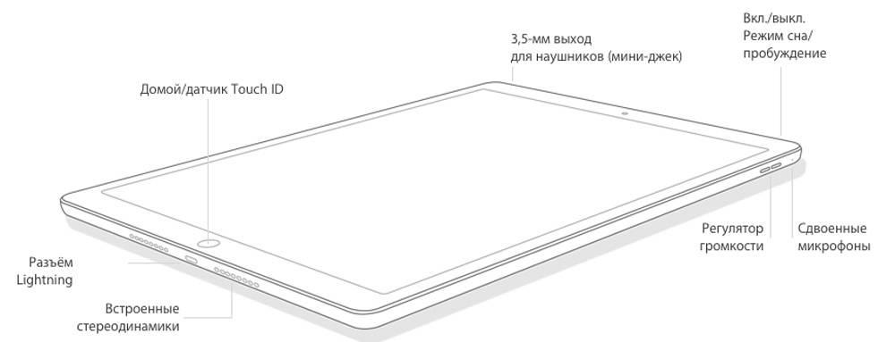 Расположение разъёмов и кнопок в iPad mini 4