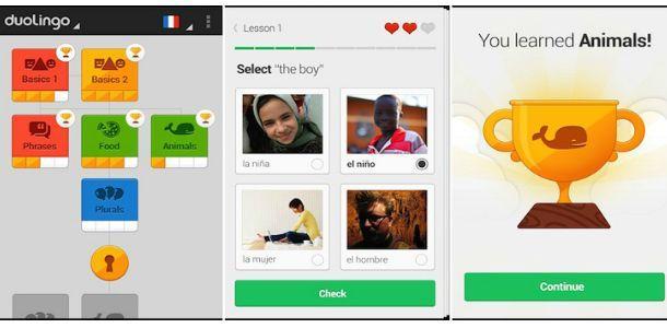 Меню приложения Duolingo